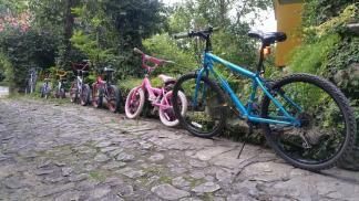 House bikes