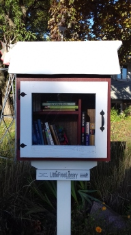 Little library in Minneapolis